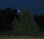 moonrise crop 1