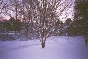 snowsunsetPH