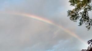 rainbow 6 May 2015
